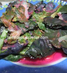 Cibez Otu Salatası